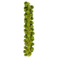 Waitrose brussels sprouts on stalk