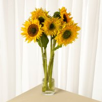 Waitrose Mixed Sunflowers