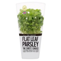 Cooks' Ingredients Flat Leaf Parsley Pot