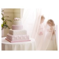 Fiona Cains Pink & White Polka Dots & Roses 4-tier Wedding Cake (Sponge & Fruit)