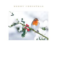 Susan O'Hanlon Photo Open Xmas Card