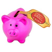 WNext Milk Choc Coins & Piggy Bank