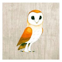 Owl Illustrated Blank Card