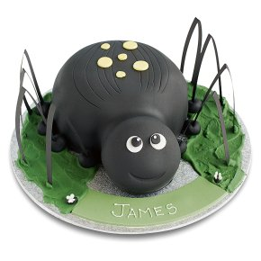 Dinosaur Cake Decorations Tesco : Spider Cake - Waitrose