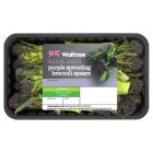 Waitrose purple sprouting broccoli spears - 230g