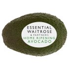 essential Waitrose medium avocado - each