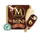 Magnum Mini baileys 6 pack ice cream - 360ml