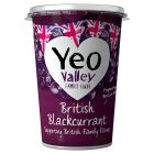 Yeo Valley British Blackcurrant yogurt - 450g New Line