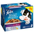 Felix Doubly Delicious Country Recipes in Jelly - 12x100g