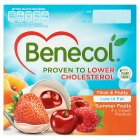 Benecol Summer Fruits - 4x120g