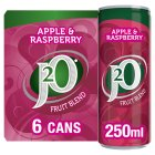 J2O fridge pack apple & raspberry - 6x250ml