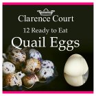 Clarence Court British Ready to Eat Quail Eggs - 12s