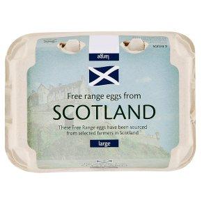 Scottish free range large eggs
