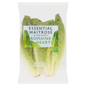 essential Waitrose romaine hearts