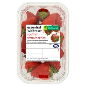 essential Waitrose Scottish Strawberries