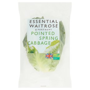essential Waitrose pointed spring cabbage
