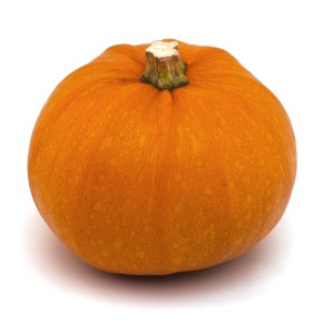 small pumpkins waitrose partners