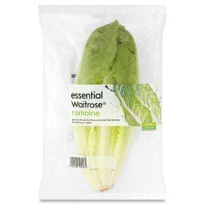 essential Waitrose romaine lettuce