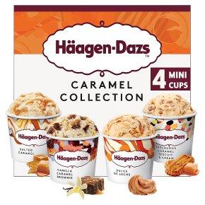 Haagen-Dazs Caramel Collection Mini Cup Ice Cream