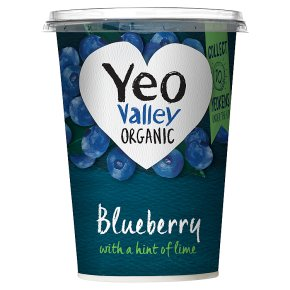 Yeo Valley organic blueberry yogurt