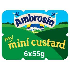 Ambrosia my mini custard