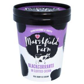 Marshfield Farm Blackcurrants in Clotted Cream