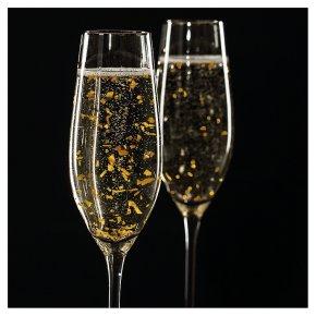 Champagne Blank Card