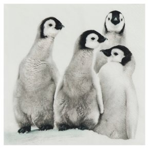 Waitrose Home Penguin Napkins 33cm x 33cm