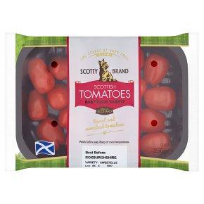 Scotty Brand Scottish Tomatoes Plum Variety