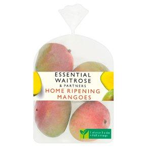 Home Ripening Mangoes
