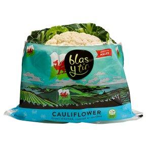 Blas Y Tir Cauliflower