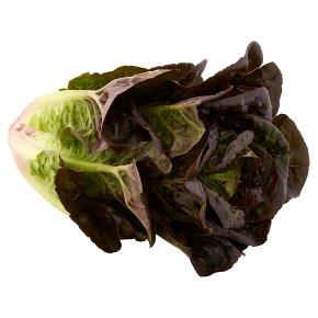 Waitrose Loose Ruby Gem Lettuce
