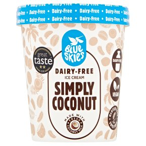 Blue Skies Dairy-Free Coconut Ice Cream
