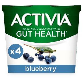 Activia Blueberry