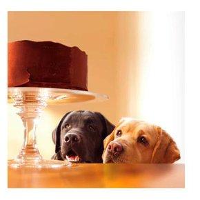 Dogs & Cake Blank Card
