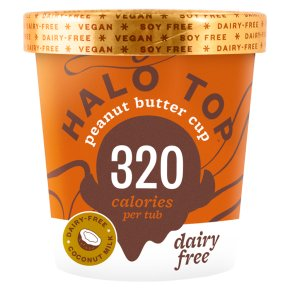 Halo Top Dairy Free Peanut Butter Cup