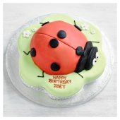 Fiona Cairns Ladybird Cake
