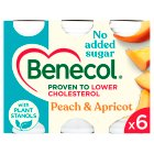 Benecol No Added Sugar Peach & Apricot - 6x67.5g